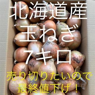 玉ねぎ 7キロ超え(野菜)