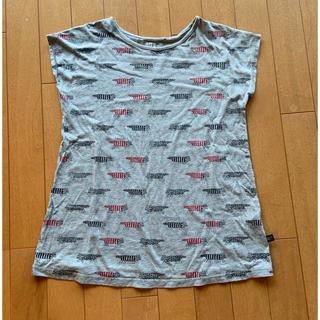 リサラーソン(Lisa Larson)のユニクロ リサラーソン Tシャツ(Tシャツ/カットソー)