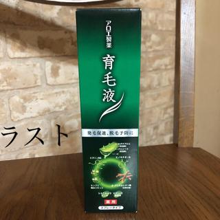 コバヤシセイヤク(小林製薬)のアロエ製薬 アロエ育毛液 150ml(スカルプケア)