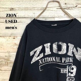 アメリヴィンテージ(Ameri VINTAGE)のUS輸入 ZION メンズ 長袖Tシャツ アメリカ ユタ ザイオン L(Tシャツ/カットソー(半袖/袖なし))