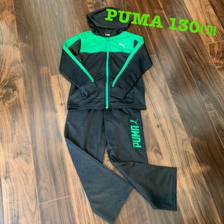 PUMA - プーマ ジャージセット 130㎝