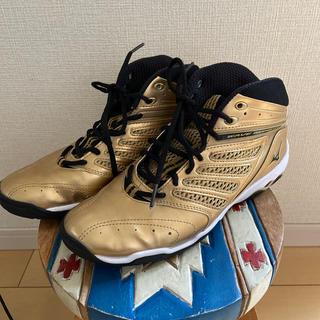 ミズノ(MIZUNO)のミズノ/ダイバーズ ゴールドシューズ(トレーニング用品)