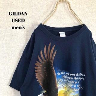 アメリヴィンテージ(Ameri VINTAGE)のUS輸入 GILDAN ギルダン メンズ 半袖Tシャツ アニマル コンドル L(Tシャツ/カットソー(半袖/袖なし))