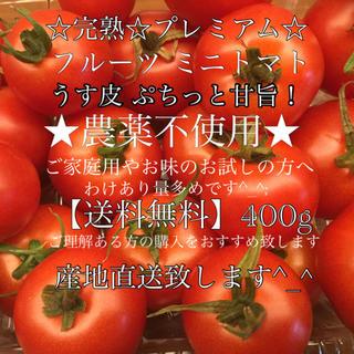 徳島県産 農薬不使用 プレミアム【ままトマト】薄皮 フルーツ ミニトマト トマト(野菜)