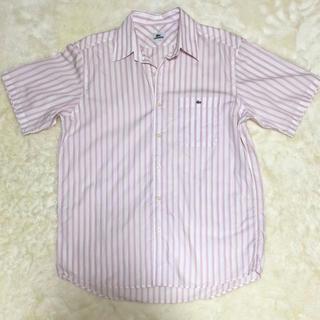 ラコステ(LACOSTE)のラコステ  ストライプ半袖シャツ(シャツ/ブラウス(半袖/袖なし))