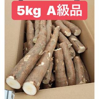 キャッサバ 5kg A級品(野菜)