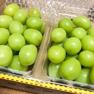 朝摘◆送料無料◆岡山産 晴王◆シャインマスカット(野菜)