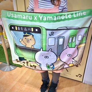 東京駅限定 うさまる ブランケット(キャラクターグッズ)