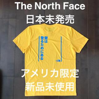 THE NORTH FACE - The North Face ノースフェイス 日本未発売 海外モデル M