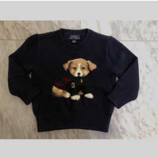 Ralph Lauren - ラルフローレン ニットセーター 2T 90 犬