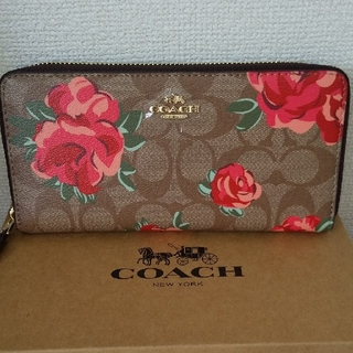 COACH - 【新品未使用】コーチ COACH 長財布 薔薇 ローズ フラワー シグネチャー
