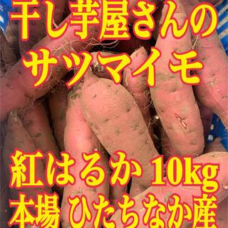 干し芋屋さんの紅はるか(ひたちなか産) 10kg