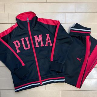 プーマ(PUMA)の【120cm】ジャージ上下セット(その他)