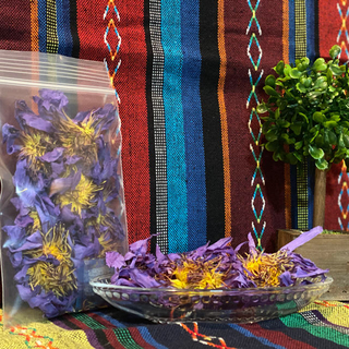 blue lotus ブルーロータス 花冠 カンナパウダー10g(ドライフラワー)
