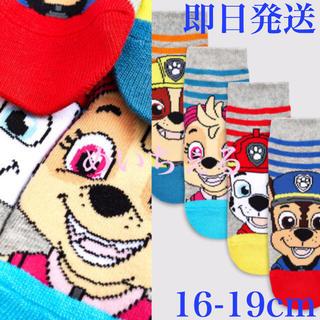 タカラトミー(Takara Tomy)の【即納】ストライプ Paw Patrol ソックス4足組(ボーイズ)uk9-12(靴下/タイツ)
