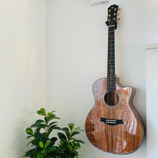 アコースティックギター/カッタウェイ/文鳥ロゴ