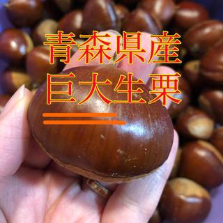 大粒生栗 青森県産