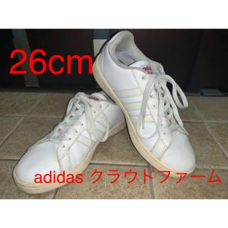 adidas - 【26cm】adidas cloudfoam 白スニーカー アディダス