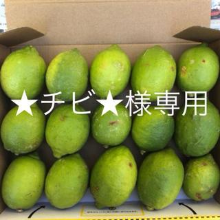 ★チビ★様専用 レモン1.3kg(フルーツ)