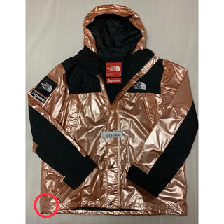 シュプリーム(Supreme)のSupreme The North Face Metallic Parka (マウンテンパーカー)