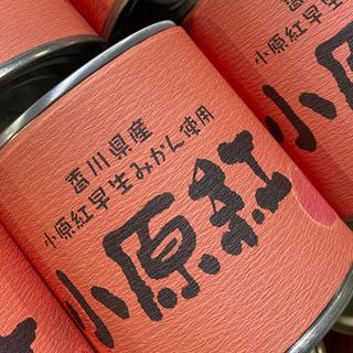 Qoo。CoCo。様専用 小原紅みかん缶詰(缶詰/瓶詰)