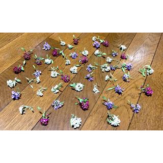お花屋さんが作った可愛いスイートアリッサムのドライフラワー(ドライフラワー)