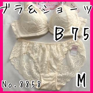 ブラ&ショーツセットB75       No.8858(ブラ&ショーツセット)