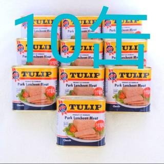 チューリップポーク 10缶 うす塩味 340g ポークランチョンミート 保存食(缶詰/瓶詰)