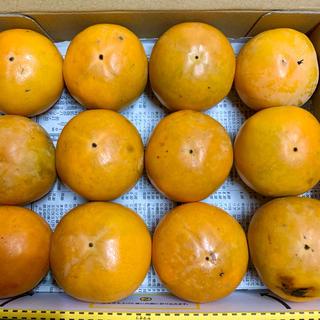 淡路島【 コンパクト 】柿