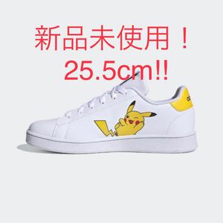 adidas - 25.5cm アディダス テニス アドバンテージ adidas FW3187