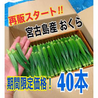 【40本】宮古島産 おくら オクラ
