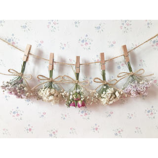 3種のピンクのバラとかすみ草ふんわりパステルピンクドライフラワーガーランド♡(ドライフラワー)