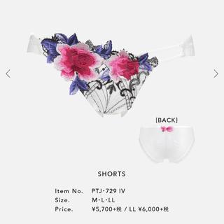 Wacoal - サルート 29グループ 店舗限定ノーマル Mサイズ