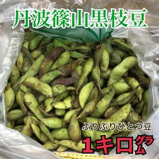 丹波篠山黒枝豆 一粒さや豆 1キログラム ぷりぷりです★(野菜)