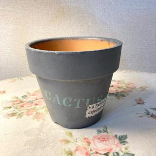 リメイク鉢(その他)