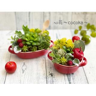 ꫛꫀꪝグラタン皿(レッド)2点セット❁多肉植物&フェイクグリーン アレンジ(その他)