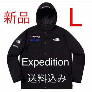 Supreme - Supreme THE NORTH FACE Mountain Parka