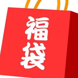 ニンテンドーDS(ニンテンドーDS)のポケモン DS ソフト 福袋(携帯用ゲームソフト)