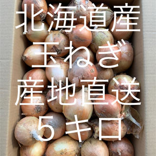 玉ねぎ 5キロ超え(野菜)