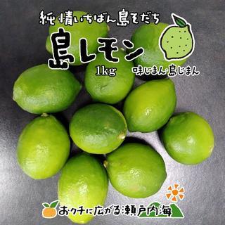 希望の島 グリーンレモン 1kg 家庭用 愛媛県 中島産 国産レモン(フルーツ)