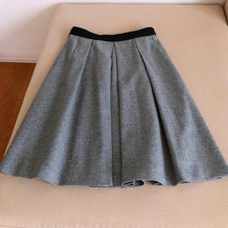 ANAYI - ANAYI アナイ ライトグレー   スカート