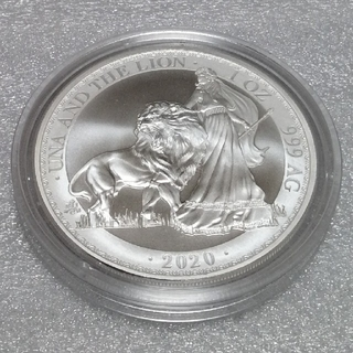 イギリス領 セントヘレナ 2020 ウナとライオン 銀貨 アイテム2