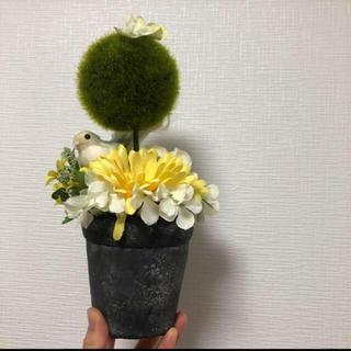 ムジルシリョウヒン(MUJI (無印良品))の造花 インテリアに🌿🌿🌿(インテリア雑貨)