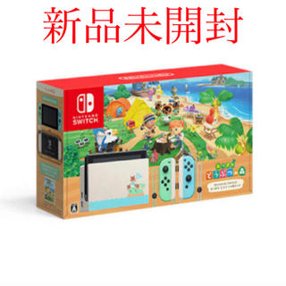 Nintendo Switch - 最安値‼️任天堂 Switch どうぶつの森 同伴版