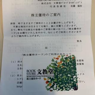株式会社 文教堂 株主優待券(絵本/児童書)
