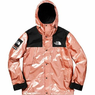 THE NORTH FACE - Supreme North Face Metallic Mountain