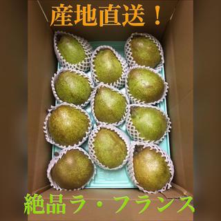 産地直送★洋梨★ラ・フランス★2L★約3.2kg★秀品(フルーツ)