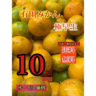 有田みかん 加工用 セール  特価価格 早い者勝ち タイムセール  10kg (フルーツ)