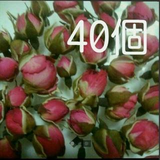 40  ローズバッド  ミニ薔薇のつぼみたち(ドライフラワー)