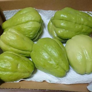 無農薬 ハヤトウリ 10キロ 30個程度(野菜)